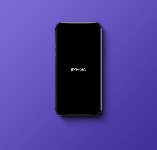 img-Case01-Mega